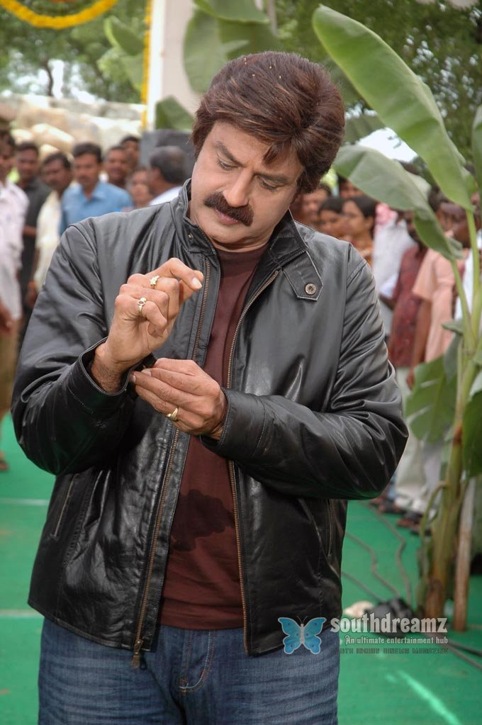 Telugu actor nandamuri stills 38