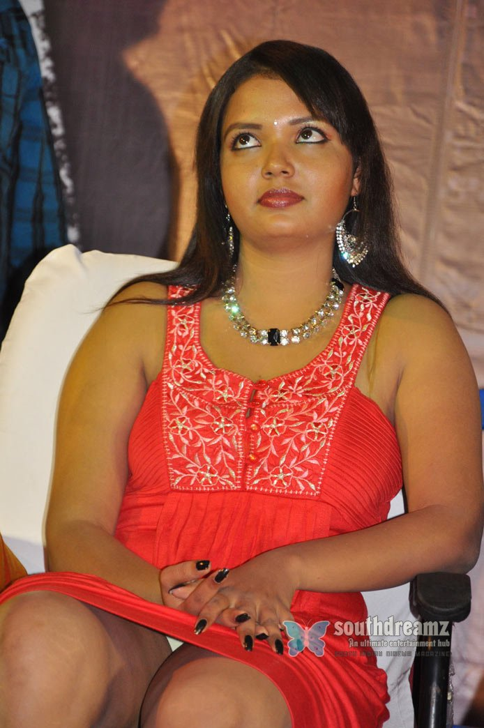 Download soolnilai audio launch stills 22