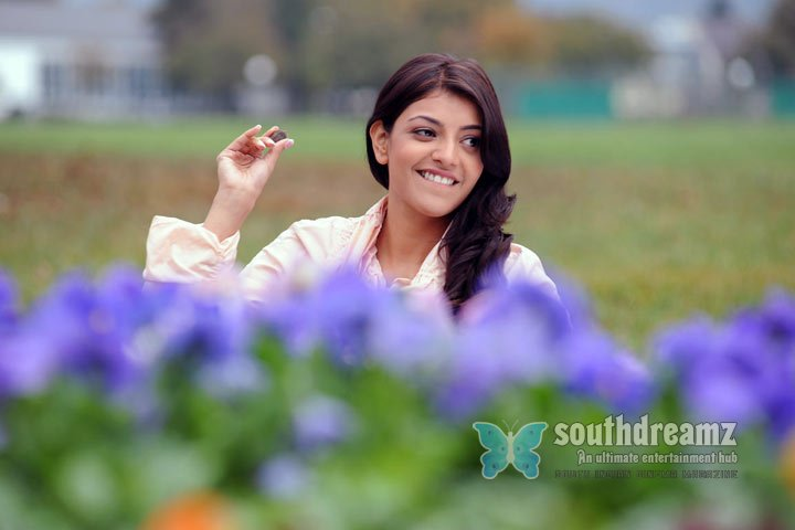 South indian cute actress kajal agarwal stills 55