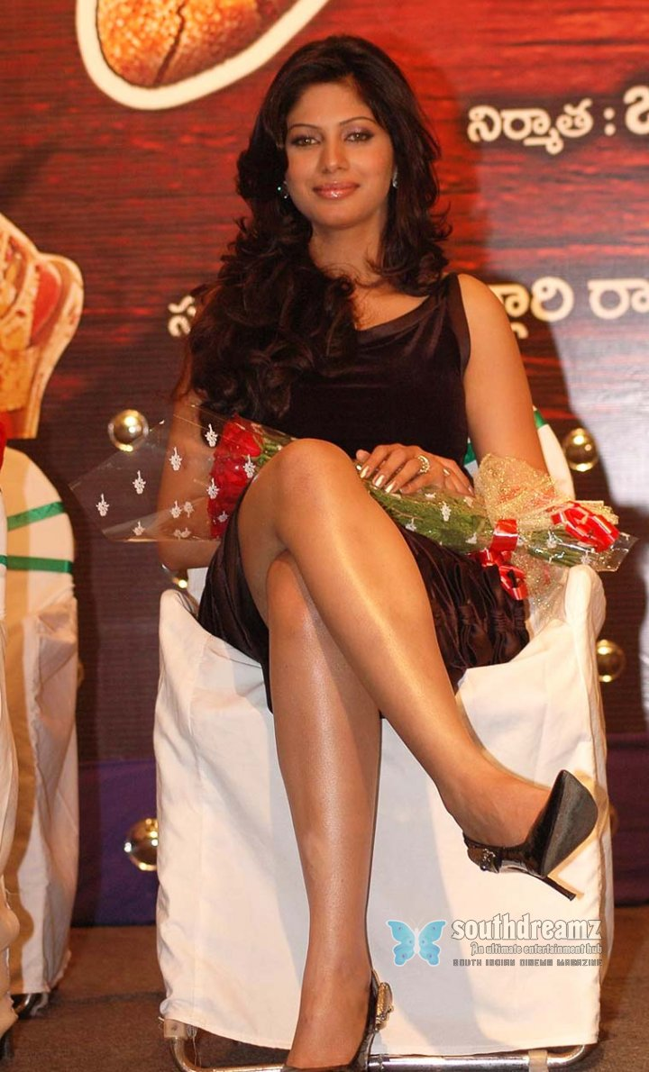 Hot telugu actress malishka photos 14
