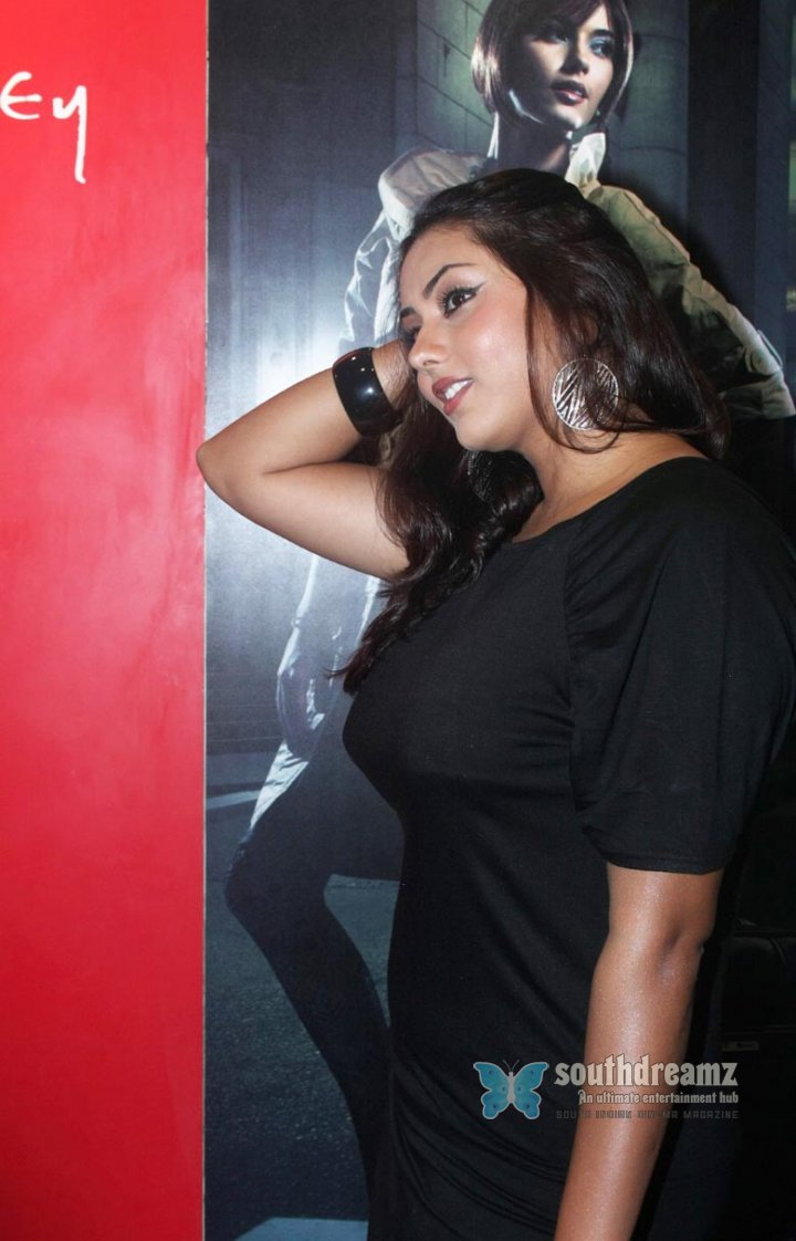 Spicy south indian actress namitha pictures 17