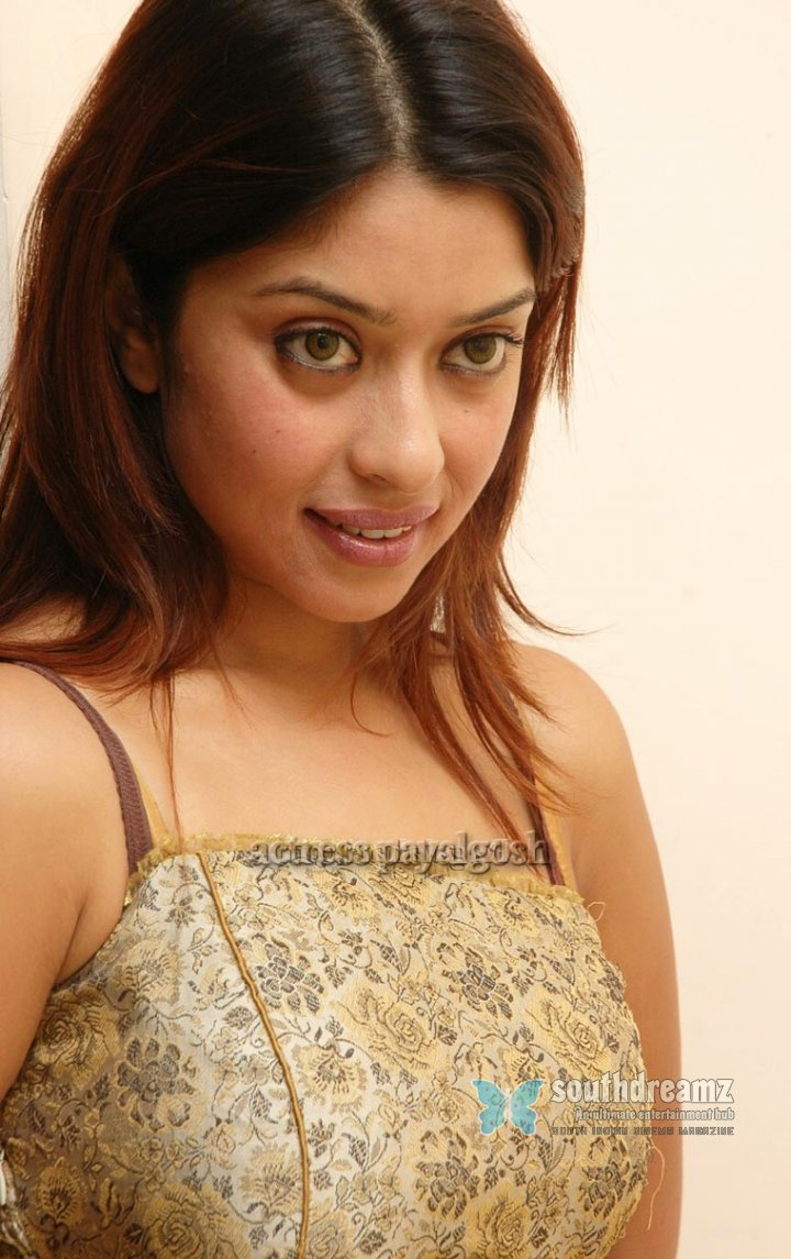 Hot telugu actress payalgosh stills 89