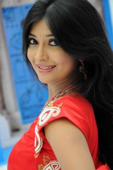Kannada Heroine Radhika Hot Photos
