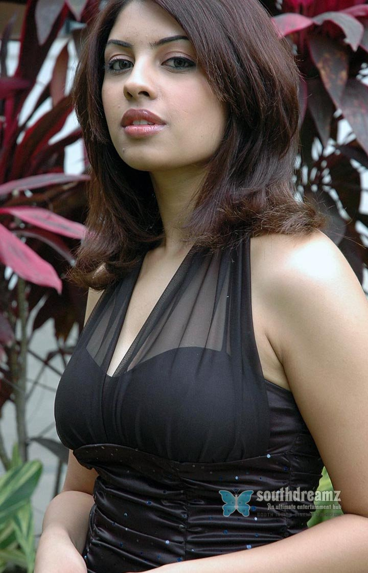 South indian actress richa gangopadhyay spicy stills 14