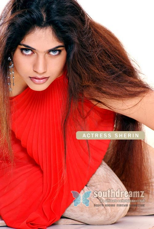 Hot actress shireen pictures 27