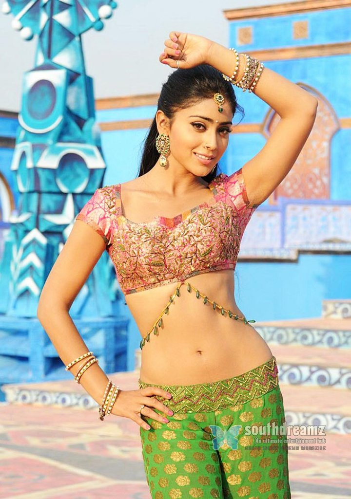 Spicy pictures of actress shriya 14