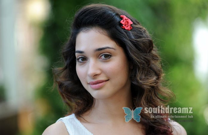 South indian glamour girl tamanna sexy pictures 13