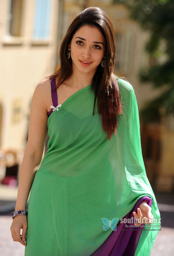 Actress  Tamana  Hot Saree Stills  Desi Indian Girl Tamannah Sexy Pictures 9 -2170