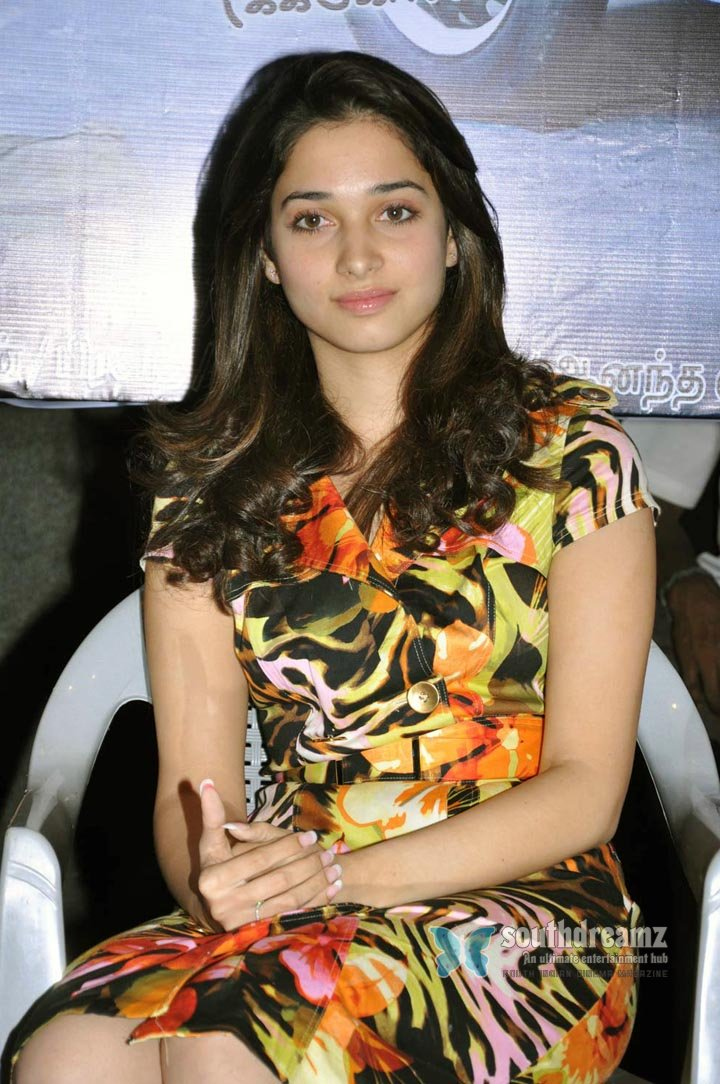 Actress pictures album tamana tamanna thamanna thamana stills pictures photo gallery images wallpapers 54