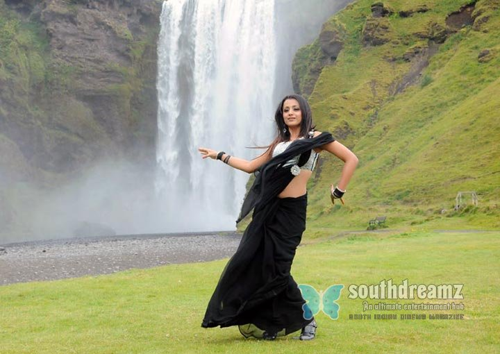 Kerala actress trisha pictures 6