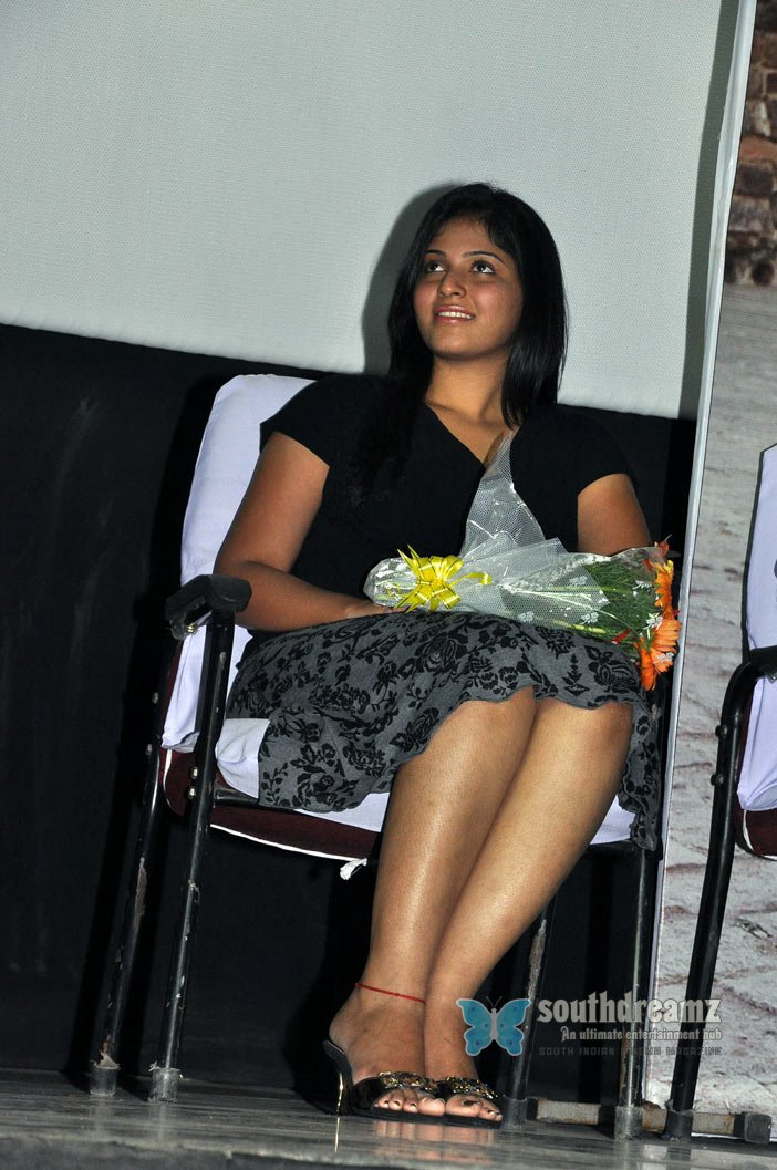 Exclusive maharaja music launch stills 66